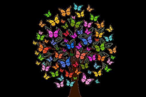 butterflies-2713343__340.png